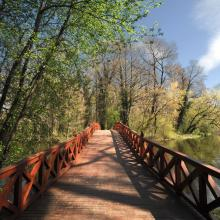 Híd tavasszal